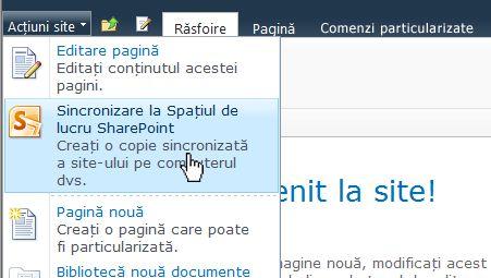 Selectați această opțiune pentru a sincroniza un site SharePoint cu computerul
