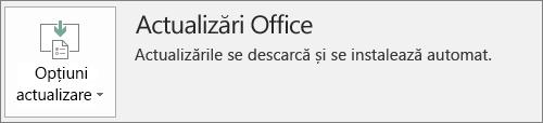 Captură de ecran cu actualizările Office în contul aplicației Office