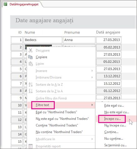 Aplicarea unui filtru într-un raport făcând clic dreapta pe o valoare în vizualizarea Raport.