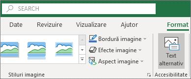 Butonul text alternativ de pe panglica Excel pentru Windows