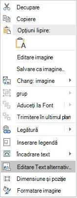 Meniul Word Win32 editare Text alternativ pentru imagini