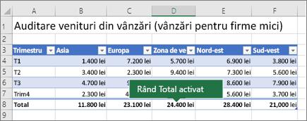 Tabel Excel cu rândul Total activată