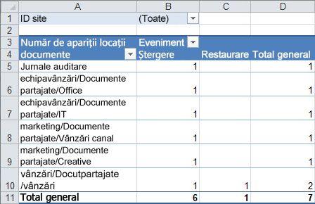 Un rezumat al datelor de audit într-un tabel Pivot