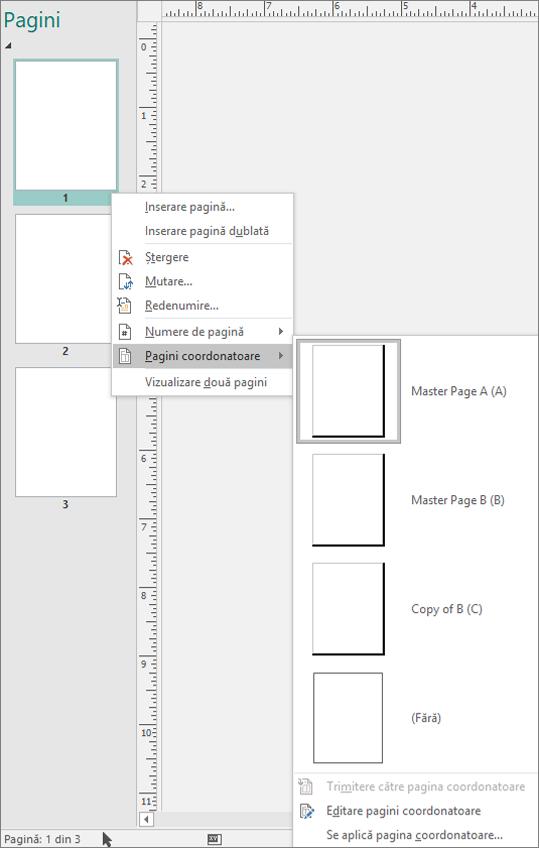 O captură de ecran care afișează opțiunea de meniu de comenzi rapide selectată pentru paginile coOrdonatoare cu opțiunile de pagină coordonatoare disponibile.