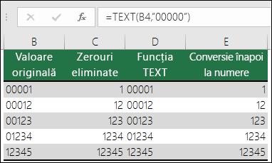 """Exemple de utilizare a funcției TEXT pentru a formata zerourile inițiale.  =TEXT(A2,""""00000"""")"""