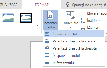Imagine formatarea - încadrare text vertical