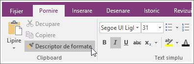 Captură de ecran a butonului Descriptor de formate în OneNote 2016.