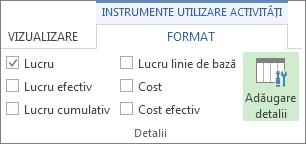 Fila Format Instrumente utilizare activități, butonul Adăugare detalii