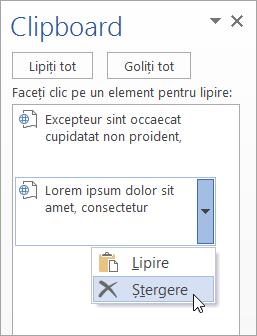 Afișează ștergerea unui element copiat din Clipboard