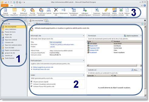 Site-uri pe care le creați cu SharePoint Designer 2010