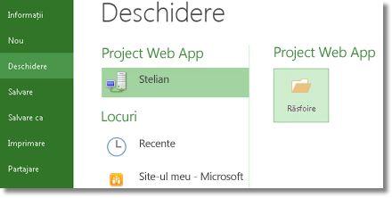Butonul Răsfoire pentru deschiderea unui fișier Project Web App