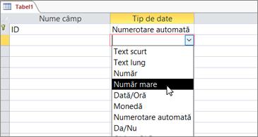 Lista tipurilor de date cu Număr mare evidențiat