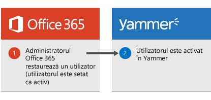 Diagramă care se afișează atunci când un administrator Office 365 restaurează un utilizator, utilizatorul este activat din nou în Yammer.