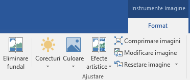 Butonul Eliminare fundal, afișat pe fila Instrumente imagine - Formatare din panglică în Office 2016