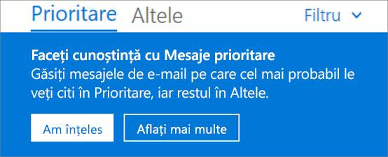 O imagine cu aspectul Mesajelor prioritare atunci când un utilizator deschide prima dată Outlook pe web.