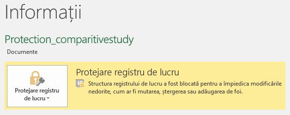Starea Protejare registru de lucru evidențiată în fila Informații