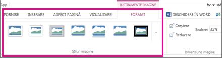 Adăugați o bordură alegând Format, apoi Stiluri imagine