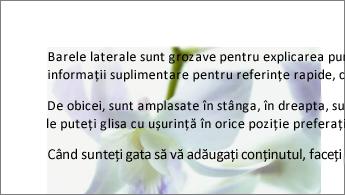 Exemplu de imagine în spatele unui bloc de text