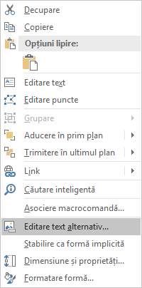 Meniu Excel Win32 editare Text alternativ pentru forme
