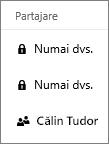 Captură de ecran a coloanei Partajare în OneDrive pentru business afișând elemente partajate și nepartajate