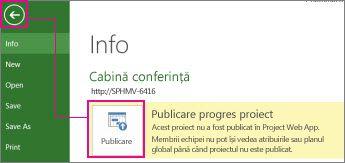 Imagine publicare proiect