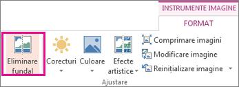 Butonul Eliminare fundal din grupul Ajustare, pe fila Instrumente imagine - Formatare