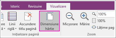 Captură de ecran a butonului Dimensiune pagină în OneNote 2016.