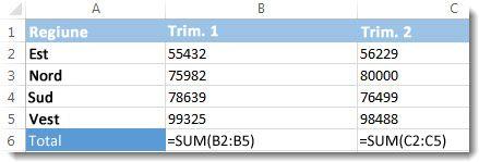 Formule vizibile într-o foaie de lucru Excel