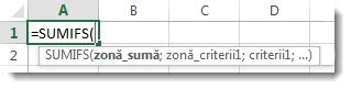 Utilizarea Completare automată formulă, pentru a introduce funcția SUMIFS
