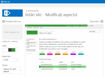 Exemplu de ecran utilizată pentru a modifica fontul, culoarea și aspectul site-ului