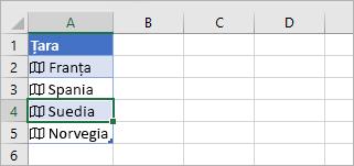 Celulă de înregistrare legată selectată într-un tabel