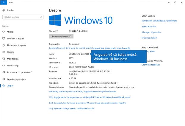Verificați dacă ediția de Windows este Windows 10 Business.