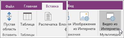 Снимок экрана: вставка внедренного видеофайла в OneNote2016.