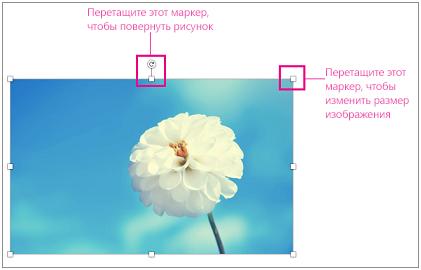 Изображение с выделенными маркерами изменения размера