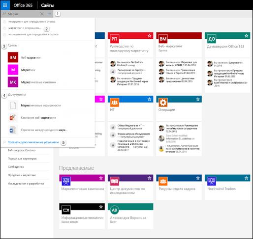 Поиск в Office 365