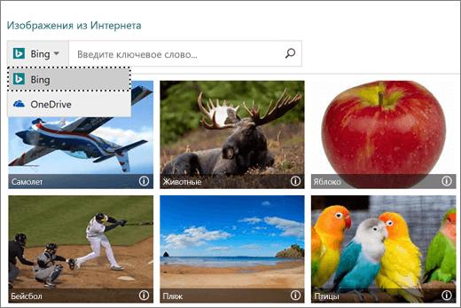 """Снимок экрана: окно """"Вставка рисунков"""" для выбора изображений из Интернета"""