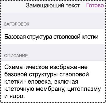 "Диалоговое окно ""Замещающий текст"" на iPhone."