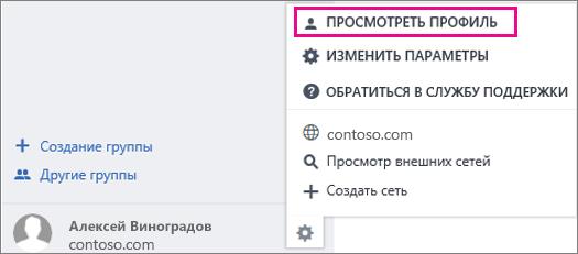 """Снимок экрана: пункт """"Просмотреть профиль"""" в Yammer"""