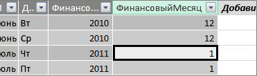 """Столбец """"Финансовый месяц"""""""