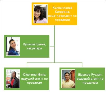 Организационная диаграмма с фотографиями