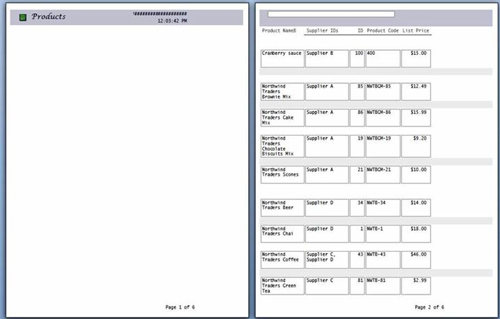 Предварительный просмотр страниц отчета с разрывом страницы