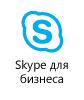 Справка по специальным возможностям в Skype для бизнеса