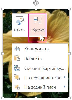 """Щелкните изображение правой кнопкой мыши и выберите """"Обрезать"""""""