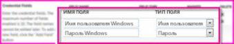 """Снимок экрана раздела """"Поля учетных данных"""" страницы свойств конечного приложения Secure Store. Эти поля позволяют вам указать учетные данные для входа в конечное приложение"""