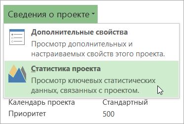 Параметры сведений о проекте