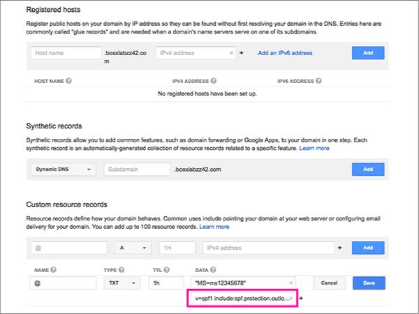 Введите или вставьте значения в разделе Custom resource records (Настраиваемые записи ресурсов)