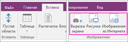Снимок экрана: параметры вставки изображений в OneNote 2016.