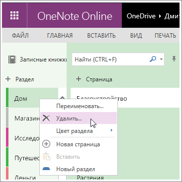 Снимок экрана: удаление раздела в OneNote Online.