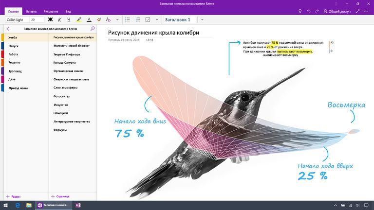 Снимок экрана: OneNote для Windows10