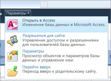 """Меню """"Параметры"""" сайта веб-базы данных в SharePoint"""